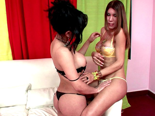 Inviting Ladyboys In Fantastic Underwear And Prime Stilettos Melanie And Vanessa Kneading Their Figures With Eagerness